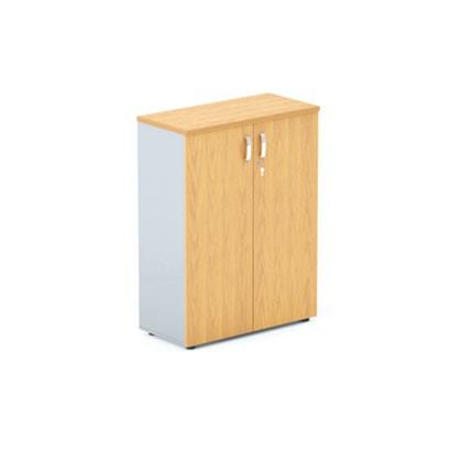 Шкаф офисный с глухими створками DH3-023 купить/заказать в Бресте, Минске, РБ у БЕЛС (производитель мебели РБ)