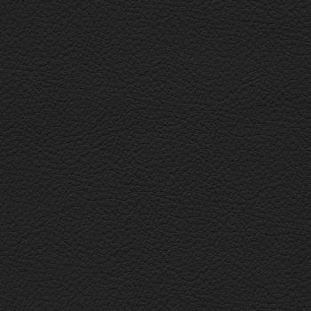 Материал обивки SP-A (Натуральная кожа/Черный)