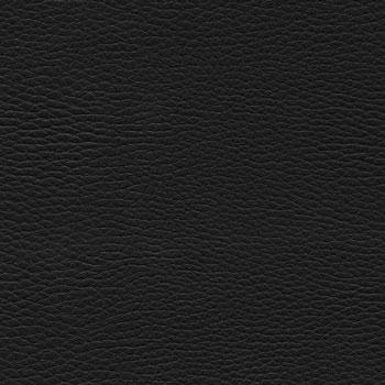 Кожзам V4 Черный фото